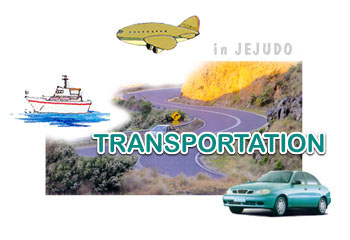 Jeju Island Age  Rental Car